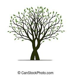 春, ベクトル, 木, illustration., leafs.