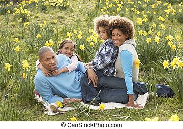 春, ラッパズイセン, 弛緩, 家族, フィールド