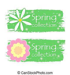 春, ラベル, コレクション, 緑, 引かれる, 花, サイン