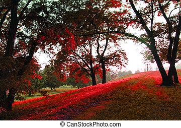 春, 中に, ∥, 緑公園