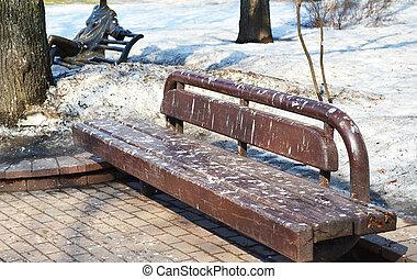 春, 公園のベンチ