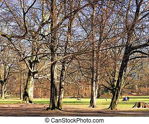 春, 公園