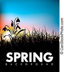 春, 夜明け, ベクトル, 草, 背景