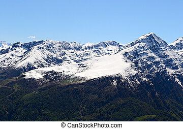 春, 山地, 高く