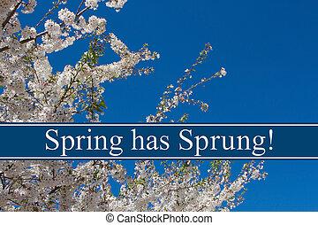 春, 持つ, 飛びかかった, メッセージ