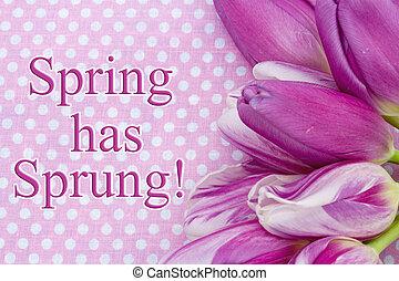春, 持つ, 飛びかかった, 挨拶