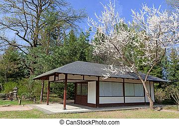 春, 日本の庭