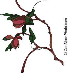 春, -, 木, ベクトル, 花, 赤