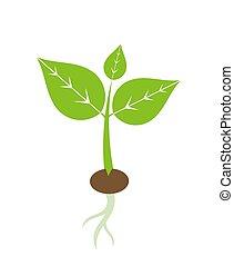 春, 植物, 実生植物, アイコン