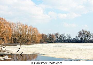 春, 湖, 氷, 早く, 森林, 自由にされた