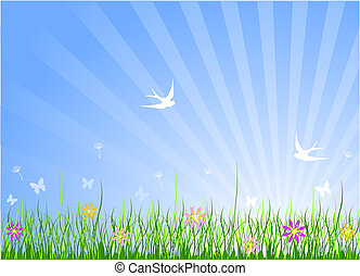 春, 牧草地, 背景