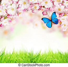 春, 白, 花, 背景