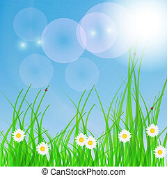 春, 緑, バックグラウンド。, 草, そして, flower.