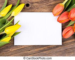春, 背景