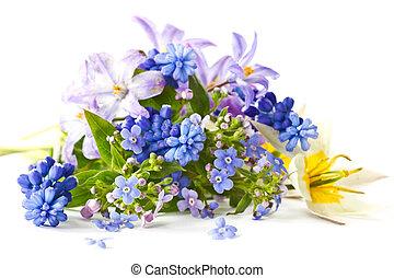春, 花束