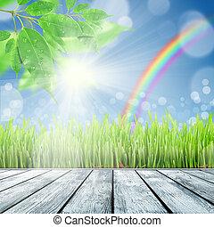 春, 草, 背景, 自然