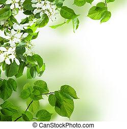 春, 葉, 背景, 花