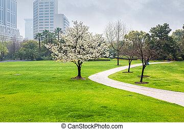 春, 都市 公園