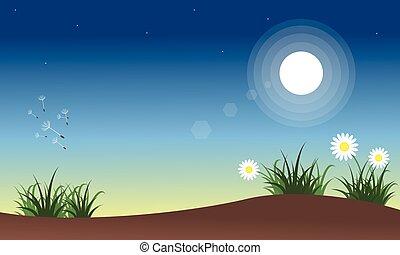 春, 風景, 夜