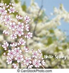 春, sakura, 背景