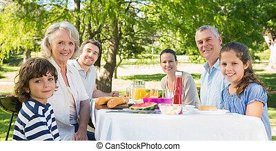 昼食, 芝生, 延長, 持つこと, 家族