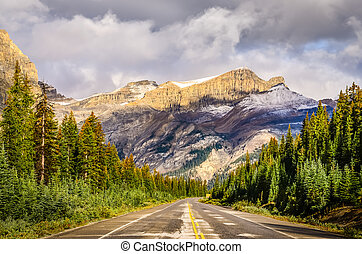 景色の 眺め, の, ∥, 道, 上に, icefields 公園道路, カナダのロッキーズ