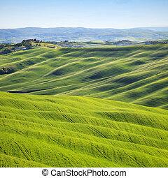 景色。, イタリア, 丘, トスカーナ, 回転, senesi, crete, 田園, sunset.