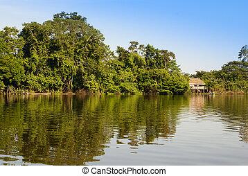 景色。, ペルー人, 写真, amazonas, ペルー, アマゾン, indian, 種族, 和解, プレゼント, 典型的