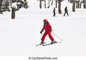 景色。, 冬, 山, slope., 森林, スキー, 女の子, 白
