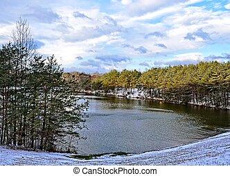 景色, 冬, 湖