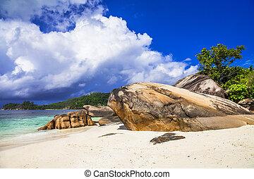 景色, 島, 浜, セイシェル, mahe