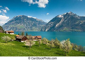 景色, 春, 湖, lucern