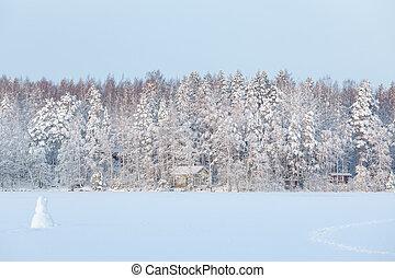 景色, finland, 冬季, 湖