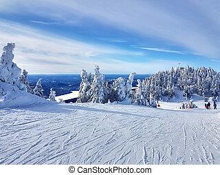 景色, mont-tremblant, 光景, スキーリゾート