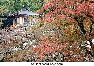 景色, ryuanji, 寺院, 秋