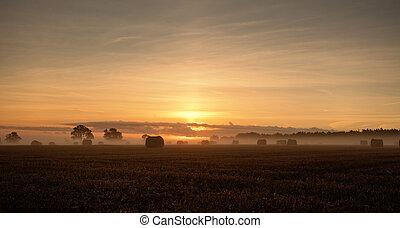 暖かい, 秋, 田園, 日の出