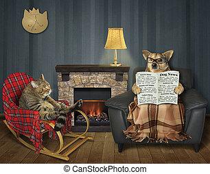 暖炉, 犬, ねこ