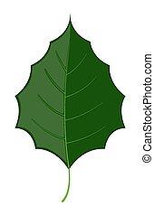 暗い緑, 葉