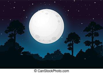 暗い, 満月, 夜