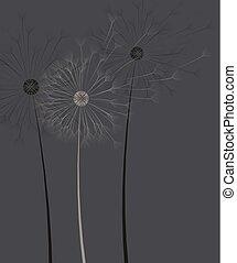 暗い, 花, 背景, タンポポ