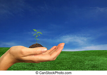 更新, 地球, 資源, ∥ために∥, 私達の, 未来