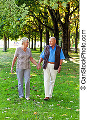更老, 年長的夫婦, 在, love.