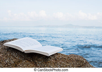 書, 上, 石頭, 在海灘
