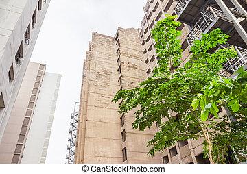 曼谷, 泰国, -, 六月, 5, 2016, :, 老和新, 住处, 高层建筑, 建筑物, 在中, 学生, 在中, chulalongkorn, university.