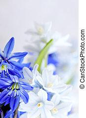 最初に, 春の花