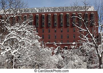 最高裁判所, ∥ために∥, 連邦である, 回路, snowy の木, ラファイエットパーク, 横切って, 白から, 家, washington d.c.