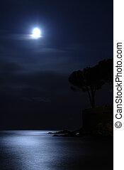 月亮, 在上方, the, 海