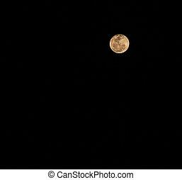 月亮, 在, the, 夜晚