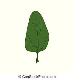 有機体である, ほうれんそう, 健康, 葉, 菜食主義者, 料理の食品, イラスト, ベクトル, 緑の背景, ハーブ, 新たに, 白
