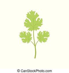 有機体である, 健康, 葉, 菜食主義者, 料理の食品, イラスト, ベクトル, 緑の背景, ハーブ, 新たに, 白, watercress